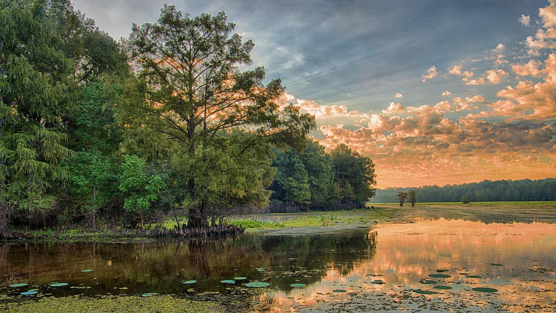 Sunrise on Caddo Lake